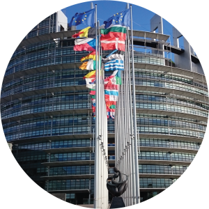 Decorative image of the outside of the European Parliament with member state flags.